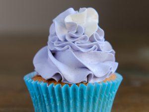 blueberry ripple